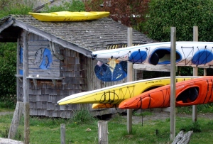 Colorful kayaks ready to launch.