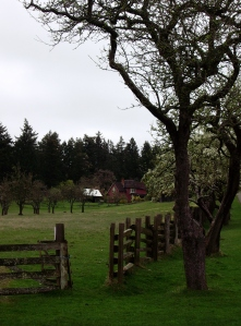 A working heritage farm at Ruckle Park
