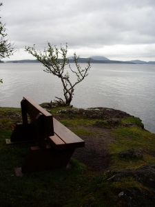Mark's bench - a place of remembrance