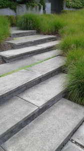 Stairs with ornamental grasses