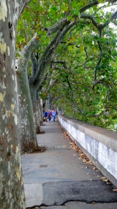 2016-09-18-rome-walking-by-river