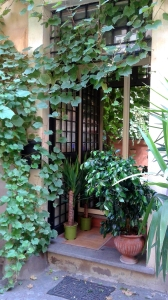 20160911-rome-door-lots-plants